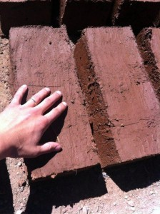Adobe bricks drying in the sun