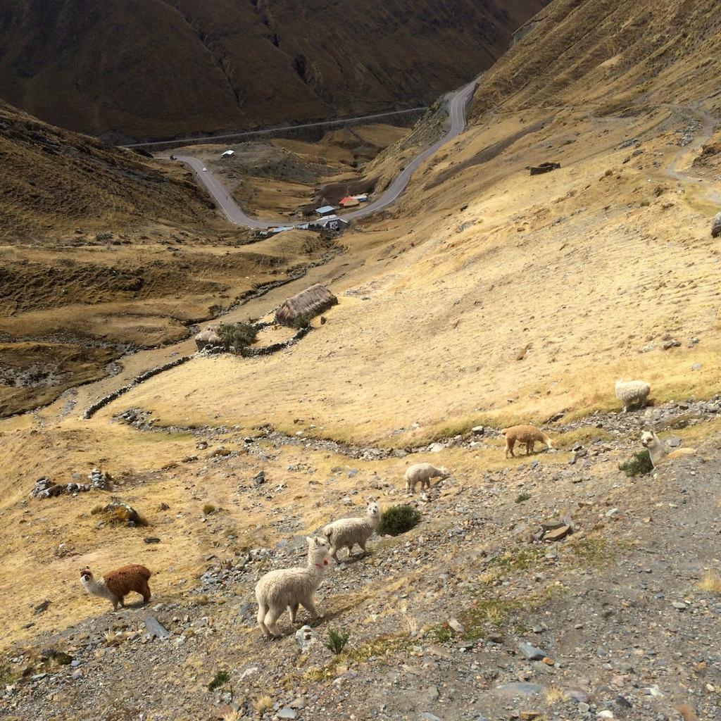 Descending from Abra Malaga