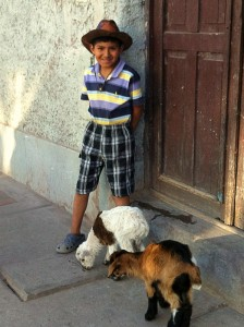 boy-with-his-animals